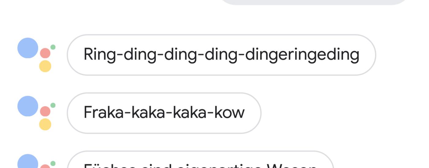 Fragen und Antworten an den Google Assistant